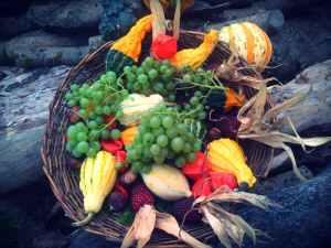 abundance agriculture autumn decoration banana