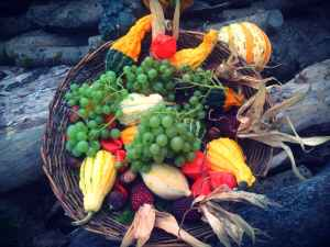 abundance agriculture autumn decoration banana