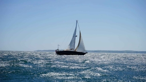white and black sail boat on ocean