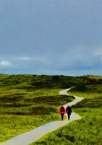 two person walking on path under blue sky