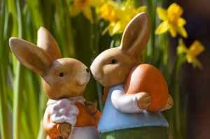 easter-bunny-easter-rabbit-bunny-couple-69816.jpeg