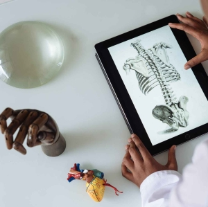 unrecognizable african american scientist studying anatomy with tablet